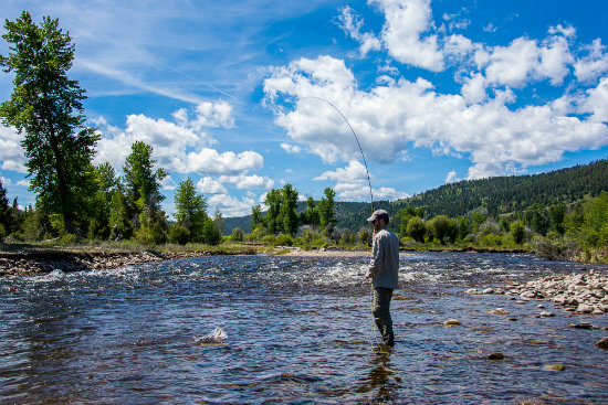 Fly Fishing in Missoula Montana. Photo by Tony Reinhardt